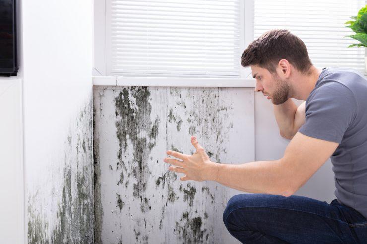 profesjonalne osuszanie ścian białystok